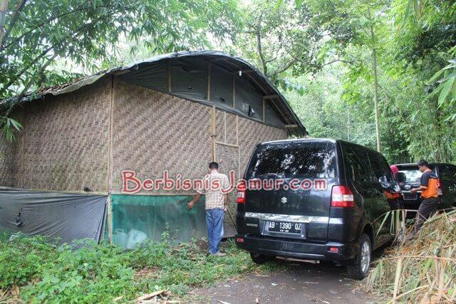 Kumbung Jamur