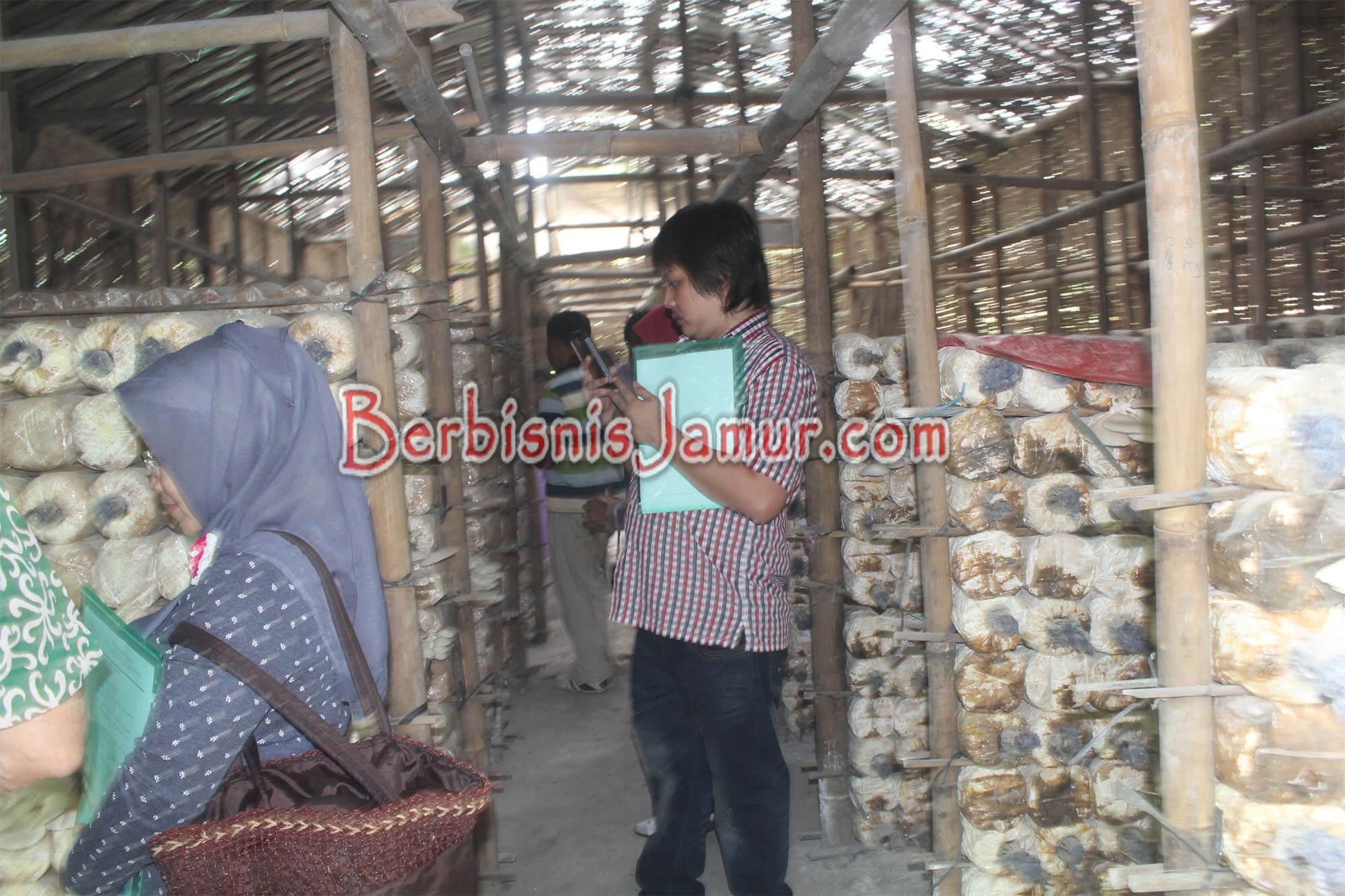 Kunjungan Peserta ke Kumbung Jamur
